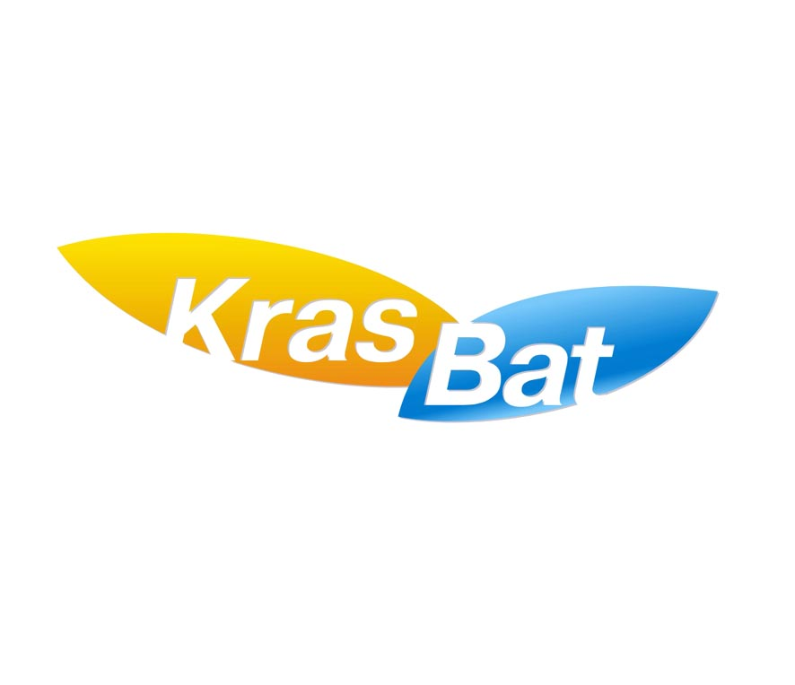 Логотип для производителей АКБ