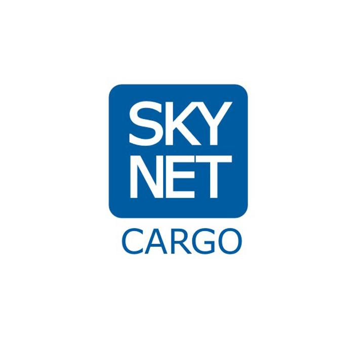 Логотип для авиа компании