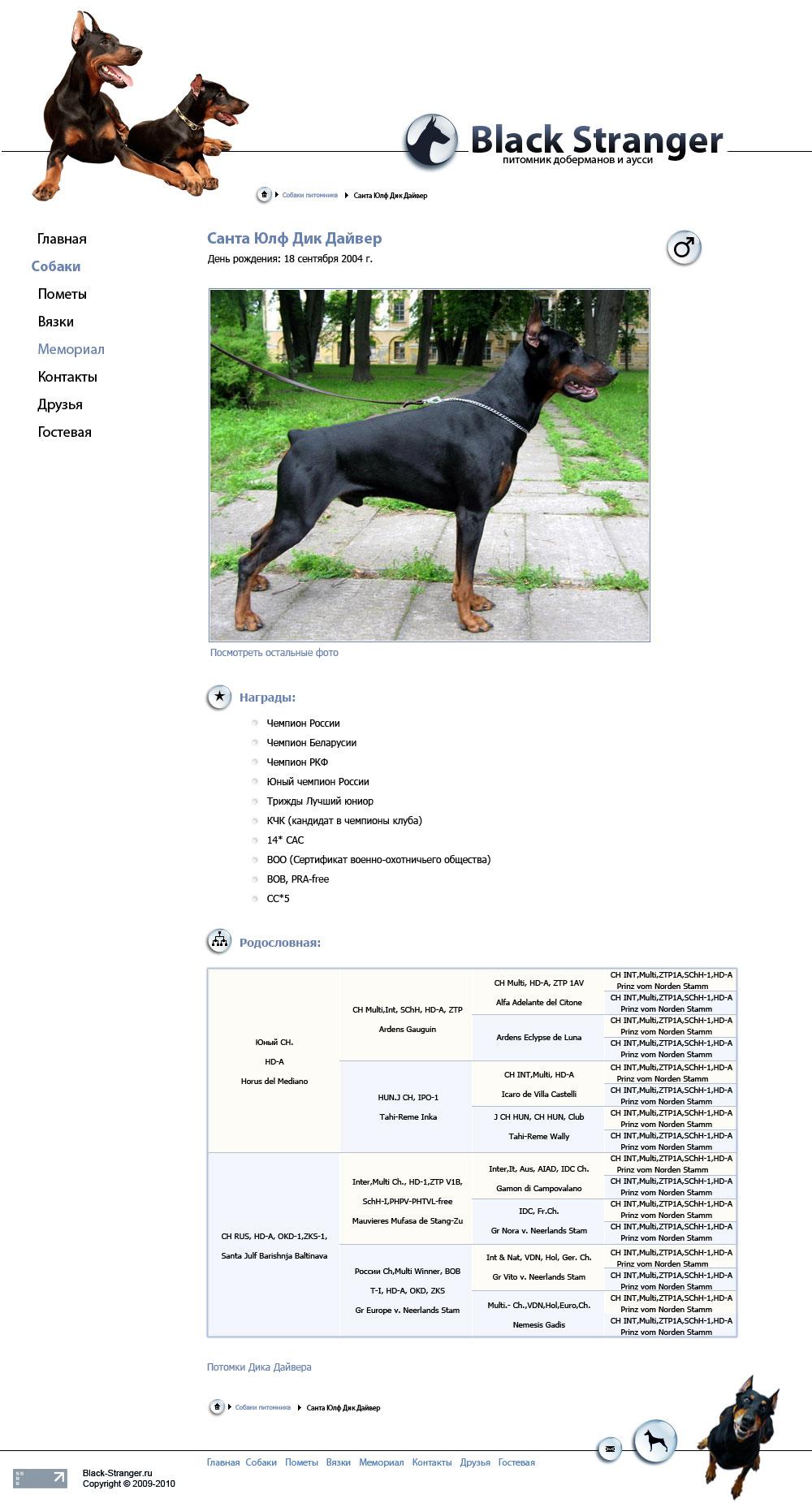 макет сайта питомника доберманов Black Stranger (стр. 3 уровня)