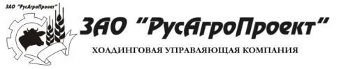 """Разработка маркетинговой стратегии Холдинга """"РусАгроПроект"""""""