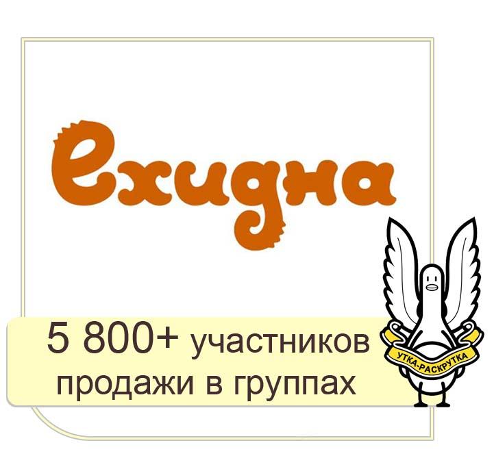 ВК, ФБ, ЖЖ - Ехидна: продвижение бренда в социальных сетях