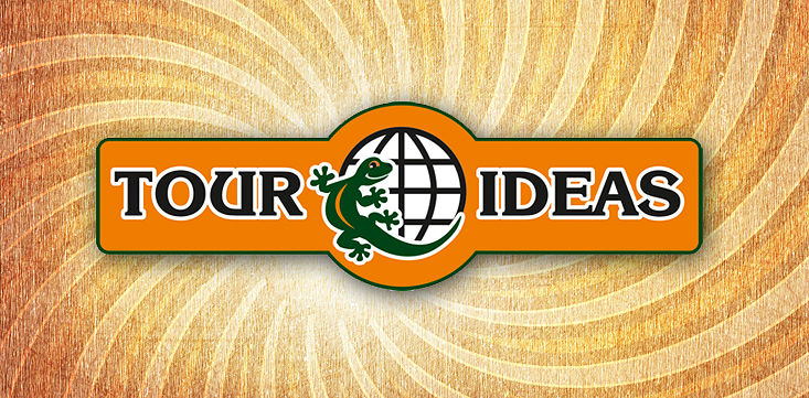 Разработка логотипа бюро путешествий