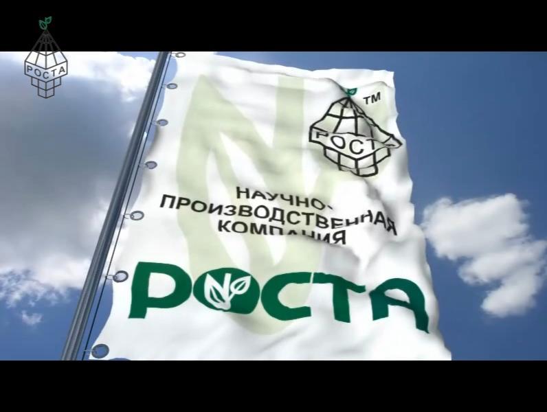 История развития компании РОСТА
