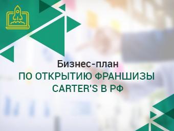Бизнес-план коттеджного поселка в Самарской области