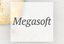 """Автоматизация учета для ООО """"Megasoft"""""""