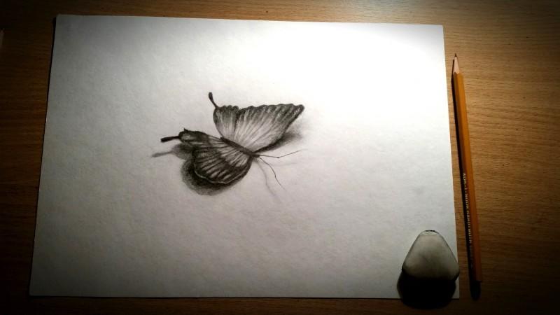 Как нарисовать бабочку в 3d. Иллюзия объема БЕЗ КАМЕРЫ и под ... | 450x800