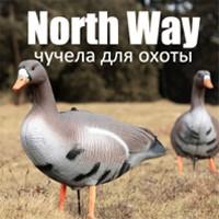 North Way: раскрутка группы в социальной сети ОК