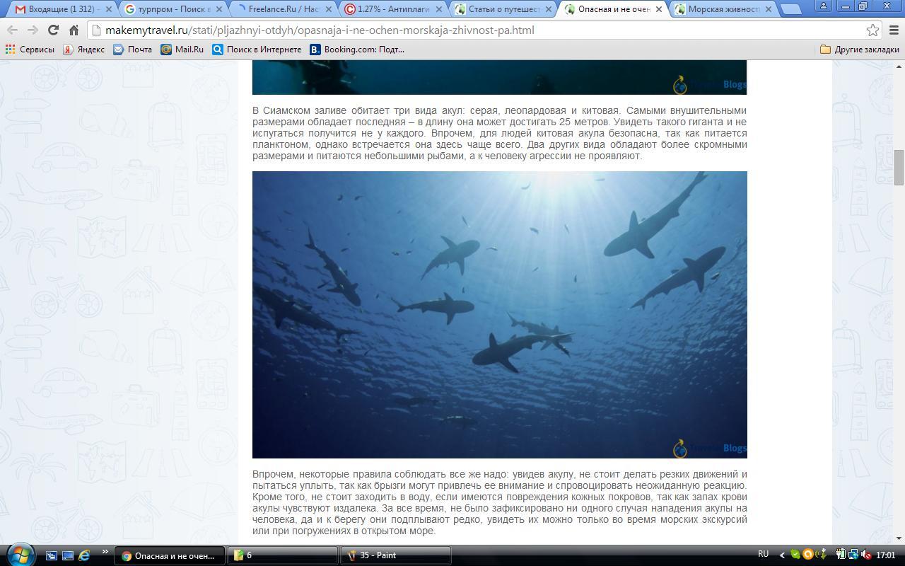 Опасная и не очень морская живность Паттайи