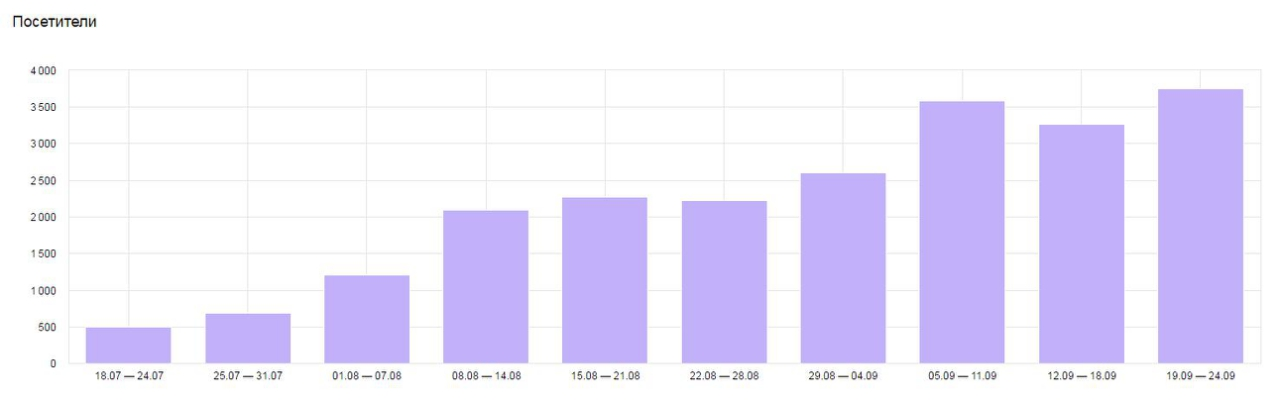 Сайт интернет-магазина одежды: рост посетителей в 6,5 раз.