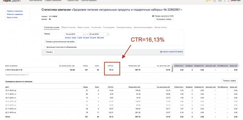Интернет-магазин здорового питания (Яндекс Директ)