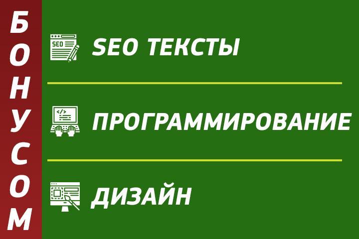 БОНУСЫ: тексты, доработки сайта, реклама я.директ, SERM.