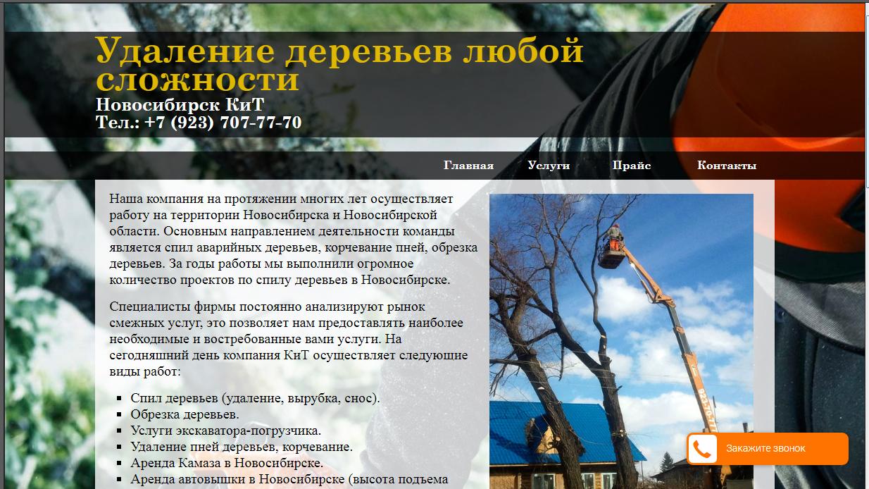 Сайт компании по Спилу аварийных деревьев.