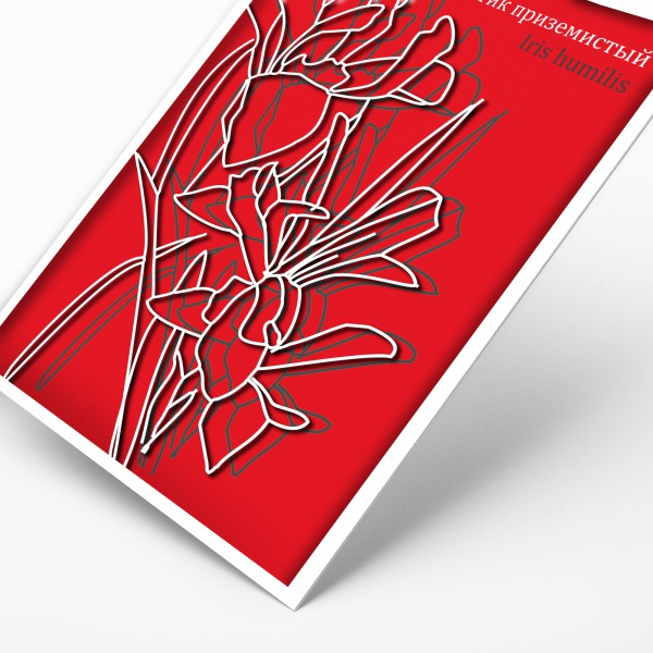 Открытка красная книга, светику что написать