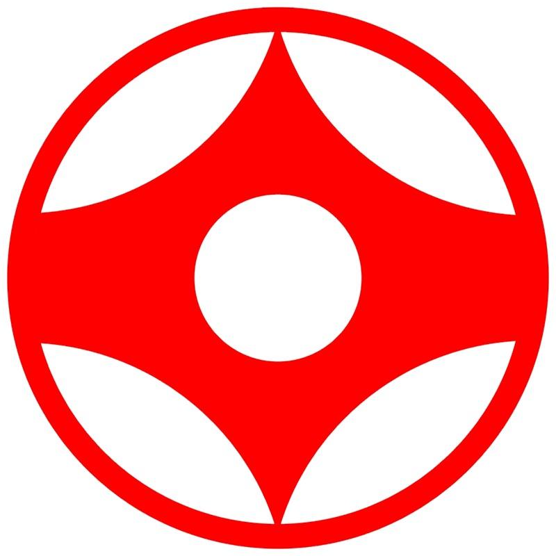 Особенности каратэ киокушинкай