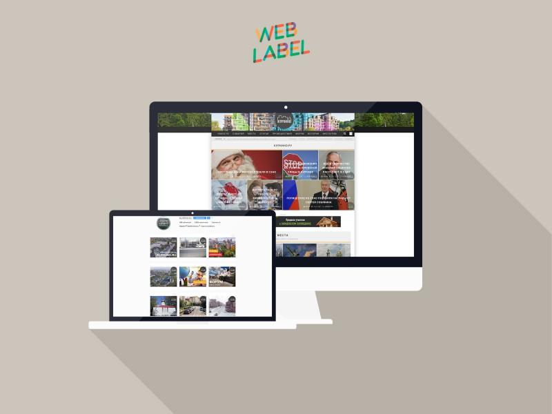Веб-дизайн для сайта района Куркино