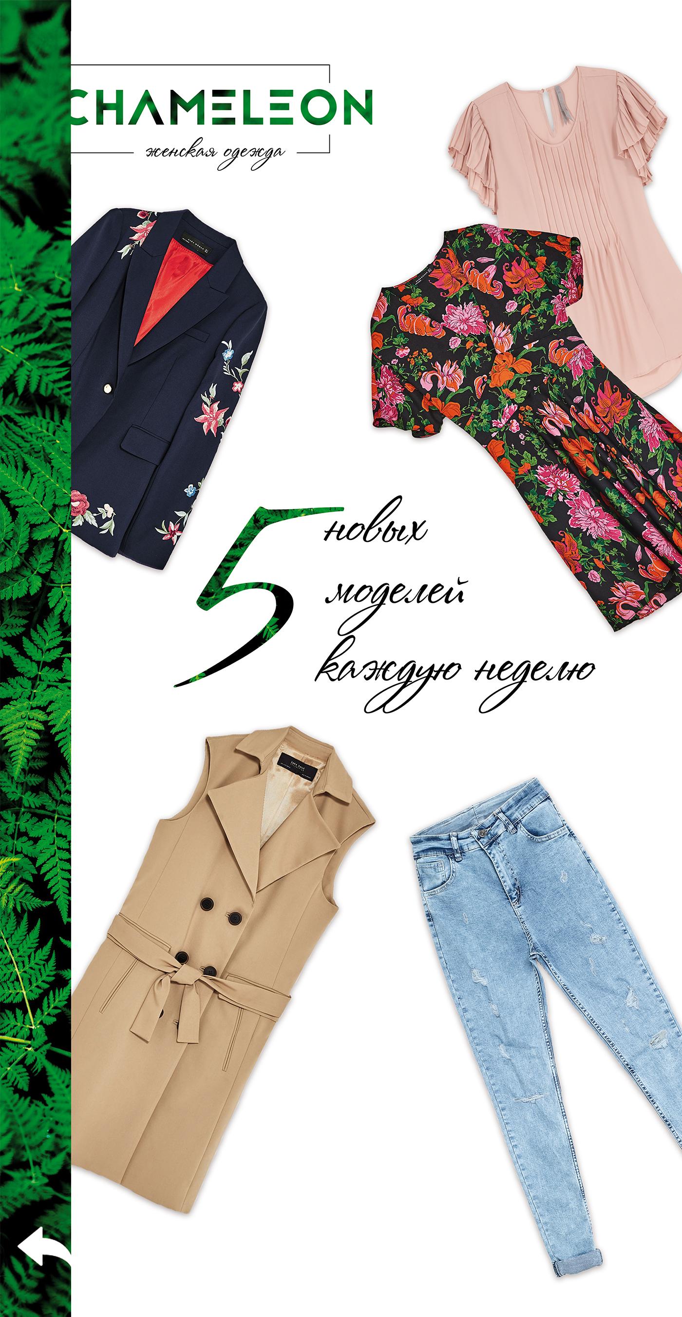 4970e2d3bc2 CHAMELEON-женская одежда – реклама магазина Instagram - Фрилансер ...