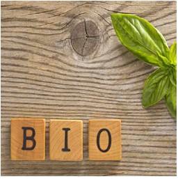 Biotoilet