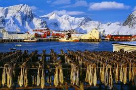 Рыболовные туры в Норвегию