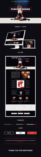 Дизайн лендинга по продаже эксклюзивных боксерских перчаток