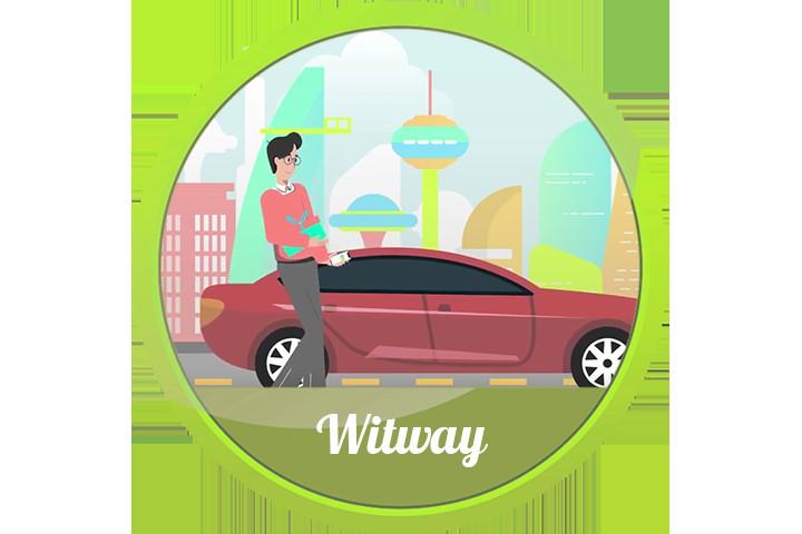 "Презентация сервиса по торговле криптовалютой ""Witway"""