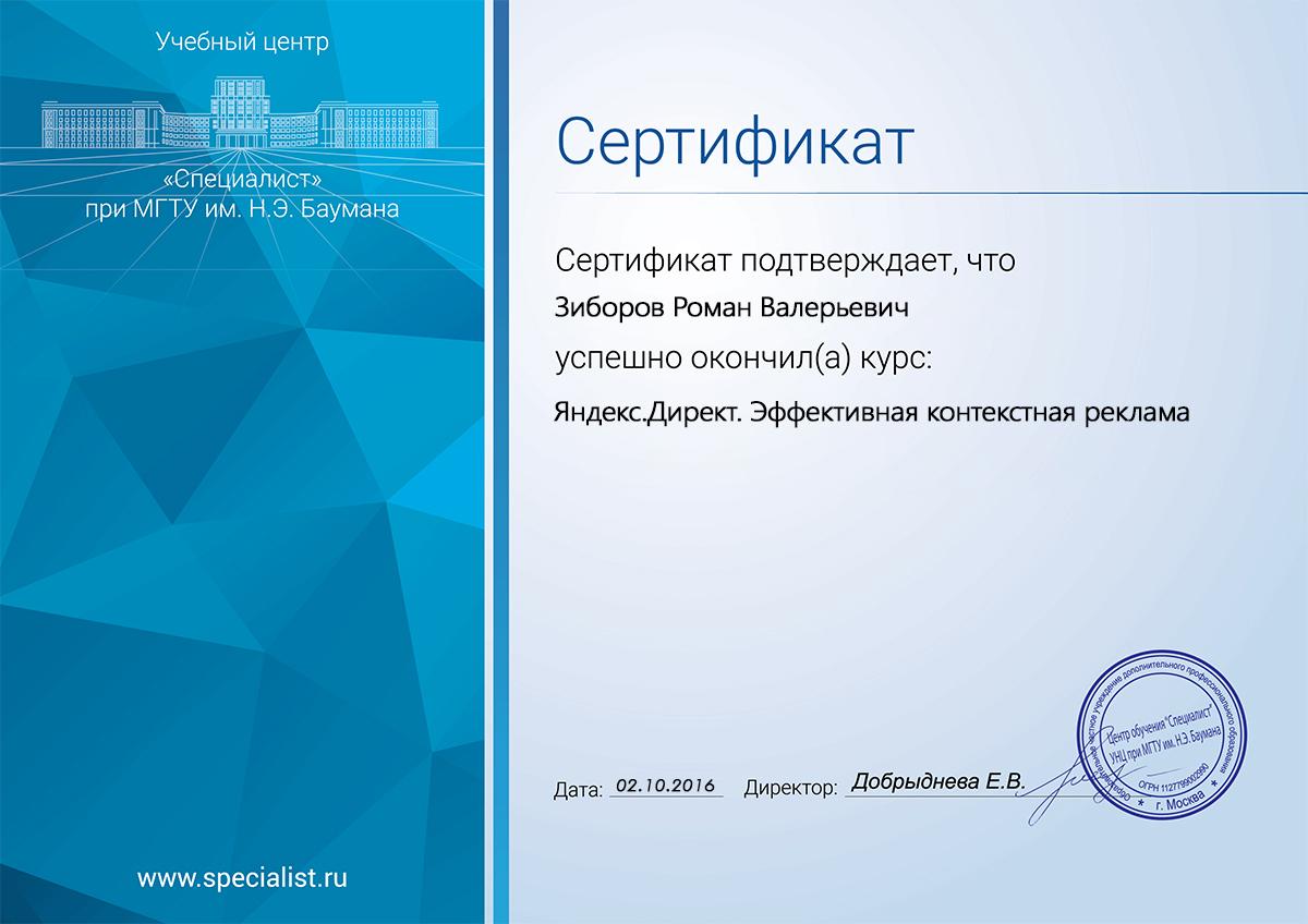 Яндекс. Директ. Эффективная контекстная реклама