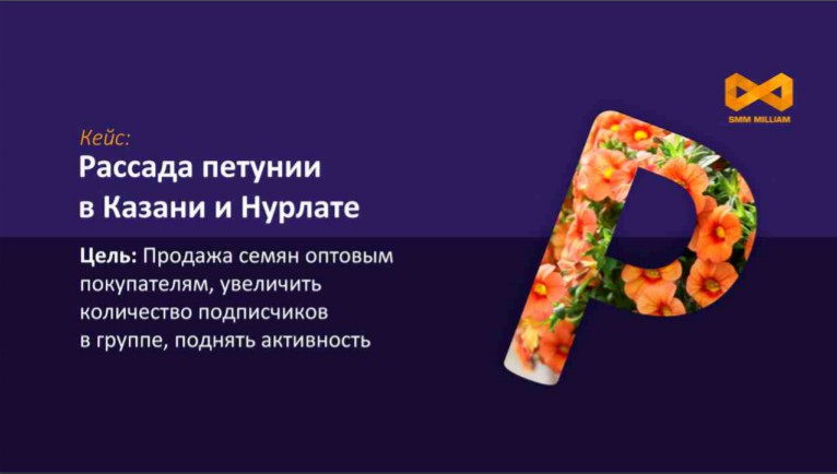Кейс: запуск рекламы на группу по продаже рассады петунии