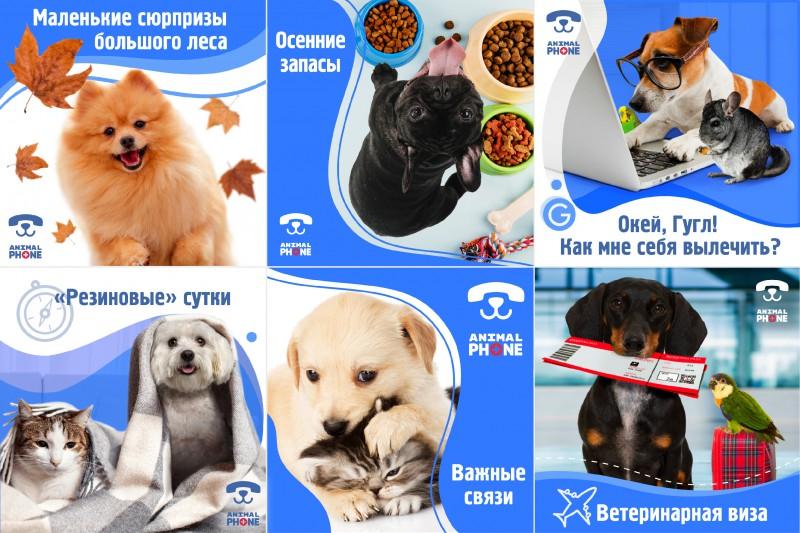 Продвижение онлайн-сервиса для животных