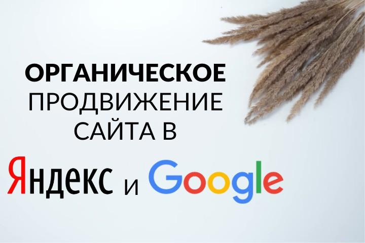 Продвижение сайтов в ТОП Яндекс и Google