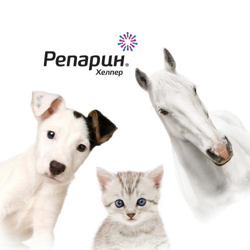 Подготовка текстов для социальных сетей ветеринарного препарата