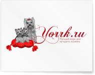 Вариант лого для yorrk.ru