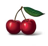 Отрисовка ягод-вишня