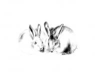 «Двое» (кролики)