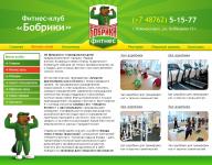 """Разработка сайта для компании """"Бобрики"""" (г. Новомосковск)"""