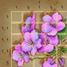 иконка для мобильной игры Японский кроссворд