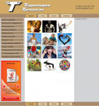 Дизайн сайта Территория Тренингов