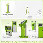 """Интернет-магазин """"Первый терминал"""" (2012)"""