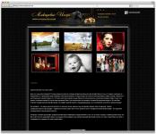 Создание сайта на cms WordPress