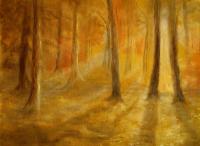 """""""Свет в лесу"""""""