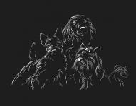 Отрисовка собак