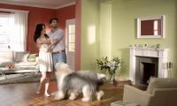 Краски Dulux - реклама на ТВ