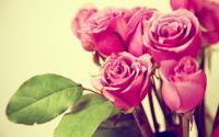 Сервис доставки цветов (написание текста)