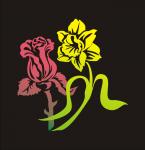 нарцыс и роза
