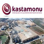 Kastamonu. О лесной отрасли в России и достижениях компании