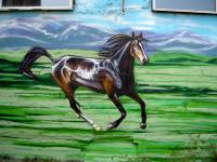 """Граффити """"Лошадь"""""""
