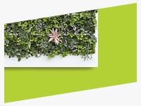Разработка дизайна сайта для компании, реализующей живые стены