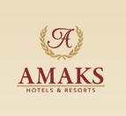 статья для Amaks (скрытая реклама)