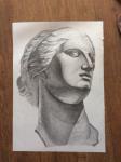 Голова Венеры