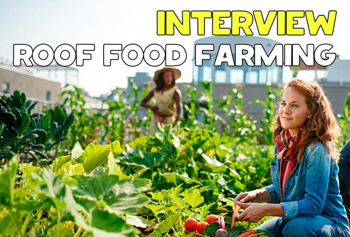 Расшифровка и перевод интервью о Roof Food Farm