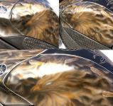 Феникс на баке мотоцикла