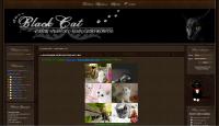 Портал про котов